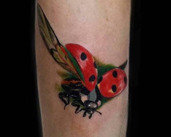 Tatuaggio Coccinella Significato Idee E Foto Tatuaggio Co