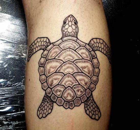 Tatuaggio Tartaruga Significato, Idee e Foto Animali Significato e Idee